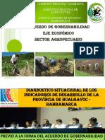 Exposición Sector Agrario Mesa de Concertación