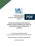 HERNANDEZ_PIA_2622D.pdf