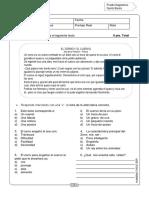 Diagnostico 5 Basico Lenguaje _planeduc