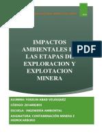 Impactos ambientales - Yoselin Abad.docx