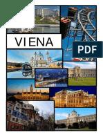 1. GUIA VIENA RUBEN.pdf
