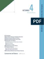 Texto base - Vetores.pdf