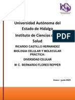 prac bio 3.pdf