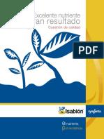 informe-tectnico-isabion.pdf
