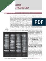 11Perc_Linguaggio.pdf