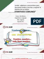 APUNTE_1_LOS_SUSTANTIVOS_COMUNES_93404_20190304_20180807_161508.PPT