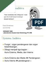 Systema Auditiva