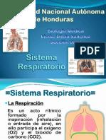 presentacionsistemarespiratorio-120628011941-phpapp02