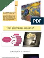 New Microsoft PowerPoint Presentation13