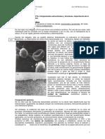 Componentes de la celula eucoriota.docx