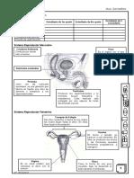 BIOLOGIA 6TO-SETIEMBRE 2.pdf