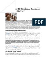 What is the GE Strategic Business Unit.docx