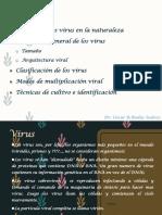 9.1-Virus.pdf
