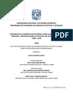 SEGURIDAD EN LA FRONRERA SUR.pdf