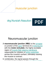 Neuro muscular junction NN.ppt