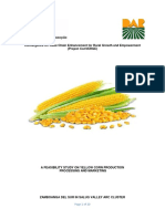 Feasibility Draft of Yellow Corn In Salug Valley(3-18-19).docx