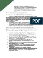 Analisis Pol. Pub. Tema 6. El Modelo de Analisis.