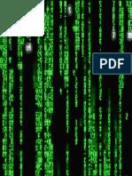 Enter the Matrix 1