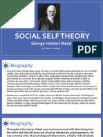 Social Self Theory