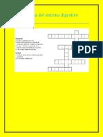 Crucigrama del sistema digestivo frankoo0k.docx
