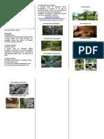 triptico proyecto(1).docx