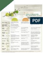 dlista alimentos colesterol.pdf