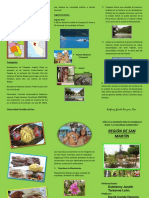 reginsanmartntrptico-130629222930-phpapp01 (1).pdf