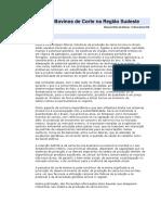 Criação de Bovinos de Corte na Região Sudeste.docx