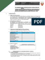 Tdr Supervision Viviendas Pampas