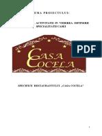 Minea Carmen 12 b- Proiect.docx