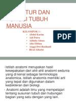 (PPT)Struktur Tubuh Dan Fungsi Manusia