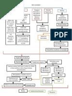 Peta Konsep Kejang Demam Fix.docx