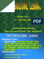 METABOLISME  LEMAK BS edit.pdf