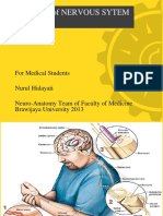 Anatomi Cns Edit