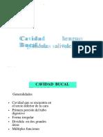 cavidadbucal-130428184421-phpapp02.pptx