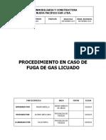Pts - Procedimiento Fuga Gas Licuado (2)