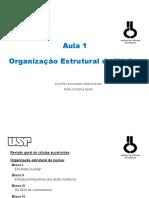 Aula 01 - Organização Estrutural Do Núcleo