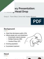 preliminary presentation