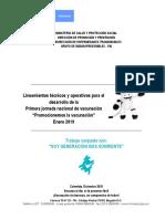LINEAMIENTO JNV ENERO 2019..pdf