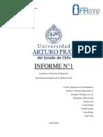Informe-N_1-Flotación1.docx