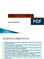 PPT4 Team Dynamics