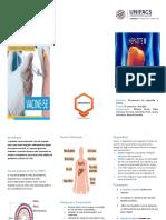 Folder Hepatite B.docx
