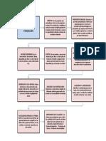 Flujograma Plan Formacion Actividad 8