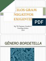 Bacilos Gram Negativos Exigentes.pdf