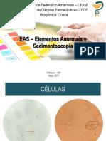 Slides de Revisão EAS - Urinálise (1)