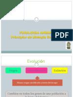 1_Evolucion