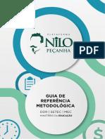GuiaPNP.pdf
