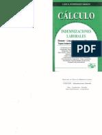 Calculo indemnizaciones laborales - Rodriguez Saiach.pdf