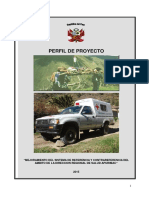PIP de Ref. y Cont. DIRESA Lev. Observ. Form 5.docx