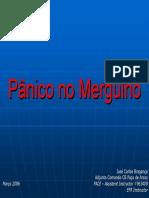 Panico_Mergulho.pdf